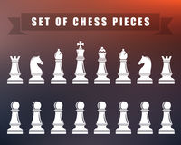 Chess icons. Vector Illustration. Icons of chess. Chess pieces on blur isolated background. Vector illustration Stock Images