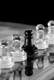 Chess Individual Royalty Free Stock Images
