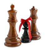 Chess isolated on white Stock Images