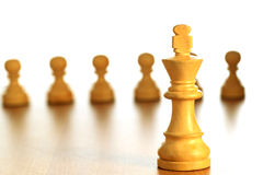 Chess king Stock Images