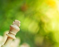 Chess king Royalty Free Stock Photo