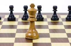 Chess king against pawns Royalty Free Stock Photo