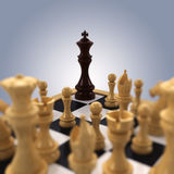 Chess king Cornered. A black chess king is pushed into the corner by all white chess pieces Royalty Free Stock Image