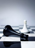 Chess king is dead. Chess king defeated by white pawn Stock Photography