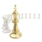 Chess king and pawn composition isolated Royalty Free Stock Photography