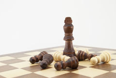 Chess king and pawns on chessboard Royalty Free Stock Photo