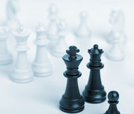 Chess king and queen Stock Images