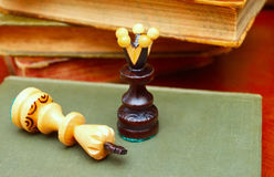 Chess. King of the queen`s feet Royalty Free Stock Photo