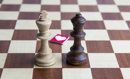 Chess king and queen. White chess king and black chess queen on the chessboard Stock Photography