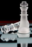 Chess kings Royalty Free Stock Photos