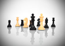 Chess Kings Royalty Free Stock Images