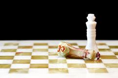Chess Kings On Board Royalty Free Stock Images