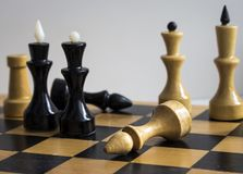 Chess kings and Queens on the Board stock images