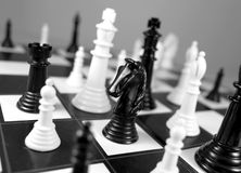 Chess knight Royalty Free Stock Photography