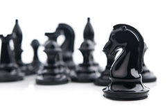 Chess knight Royalty Free Stock Photos