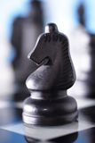 Chess-Knight Stock Photo