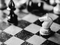 Chess knight and bishop Stock Images
