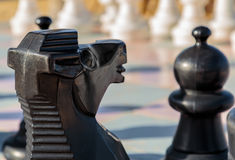 Chess Knight Business. A black Knight on a large chessboard looking at a Pawn Stock Image