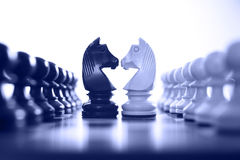 Chess knight challenge. Selective focus blue tone Stock Photography
