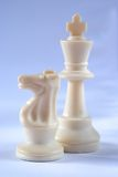 Chess knight and king Stock Images