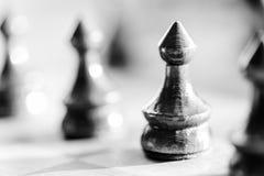 Chess knight pawn on chess board close up. Black and white. Macro horizontal Stock Photo