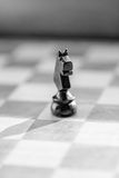 Chess knight pawn on chess board close up. Black and white. Macro vertical Stock Photography