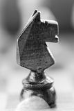 Chess knight pawn on chess board close up. Black and white. Macro vertical Royalty Free Stock Photography