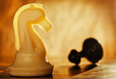 Chess knight pawn in front and in the background. Stock Photos