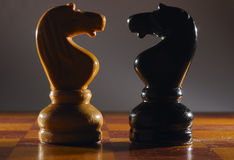 Chess knights. Stock Photography