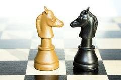 Chess Knights Royalty Free Stock Photo