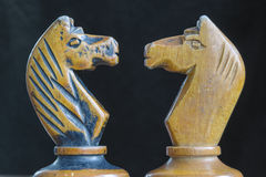 Chess knights Royalty Free Stock Photography