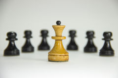 Chess. Leader. Photo taken on a white background. In the foreground is the queen chess piece. In the background is black pawns. Leadership, the first, the best Royalty Free Stock Image