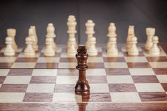 Chess leadership concept on the chessboard Stock Image