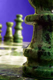 Chess macro Stock Photography
