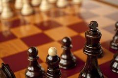 Chess macro shot Stock Photography
