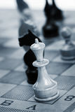 Chess-man Royalty Free Stock Image