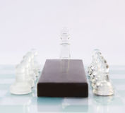Chess meeting Royalty Free Stock Images