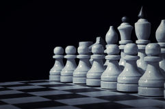 Chess On A Chess Board Stock Images