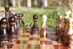 Free Chess On Board One Stock Photography - 81846152