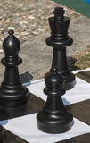 Chess outdoors Royalty Free Stock Photo