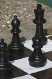 Chess outdoors Royalty Free Stock Photos