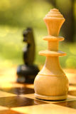 Chess in the park Royalty Free Stock Images