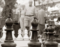 Chess in the park. Older couple came to play chess royalty free stock images
