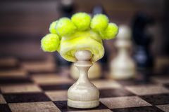 Chess pawn in foolish hat Stock Photos