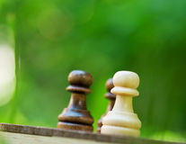 Chess pawns on the board Stock Images