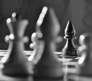 Chess photo. Black and white chess on the chessboard Stock Photos