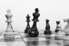 Chess. Photographed on a  board Royalty Free Stock Photography
