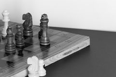 Chess. Photographed on a board Royalty Free Stock Image