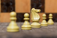 Chess. Photographed on a board Royalty Free Stock Photo