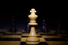 Chess photographed on a chessboard. Chess photographed on a chess board during game Royalty Free Stock Photos